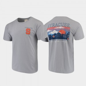 Men Syracuse Gray College T-Shirt Campus Scenery Comfort Colors