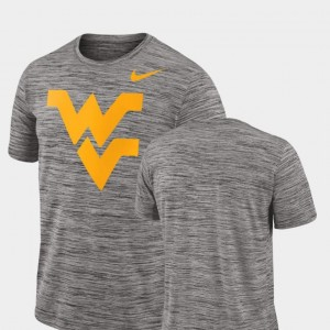 Mountaineers Charcoal Performance College T-Shirt 2018 Player Travel Legend For Men's